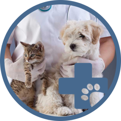 http://veterinaire-lacroixblanche.fr/wp-content/uploads/2018/10/icone-vet-home-400x400.png